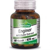 Herbina Enginar Ekstratı Artichoke Ekstraktı 60 Kapsül 620 Mg