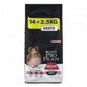 Proplan Somonlu Seçici Yetişkin Köpekler İçin Mama 16,5 Kg