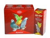 Güvercin Bağırsak Sistemi Geliştirici Avi Diar