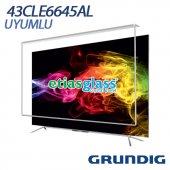 Grundıg 43cle6645al Tv Ekran Koruyucu Ekran Koruma Camı Etiasglass