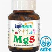 Mgs L Karnitin Çitosan Spirulina 90 Kapsül 410 Mg...