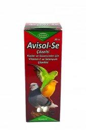 Biyoteknik Avisol Se Kuşlar İçin Vitamin E Ve Selenyum Çözelti 30