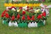 Dekoratif Renkli Geçirmeli Bahçe Çiti 17 Cm Uzunluk X 8 Ad 1,36 M