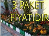 24 Adet Dekoratif Geçirmeli Renkli Bahçe Çiti 3 Paket