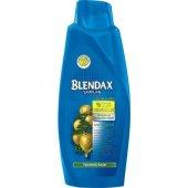 Blendax Şampuan 550 Ml Zeytinyağı Özü