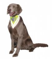 Nobby Safety Köpek Güvenlik Bandanası Xs S