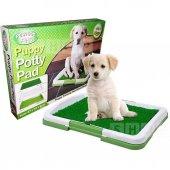 Yavru Köpek Tuvalet Eğitim Seti Köpek Lazımlık Eğitim