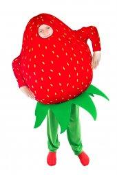çilek Kostümü Çocuk Kıyafeti
