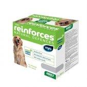Viyo Reinforces Yetişkin Köpekler İçin Gıda Takviyesi 7 X 30 Ml