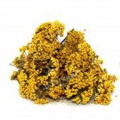 Civan Perçemi Sarı Civanperçemi 250 Gr.