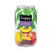 Cappy Karışık Meyve Nektarı Kutu Meyve Suyu 330ml (12 Li Koli)