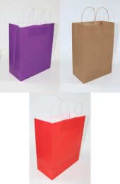 Roll Up Party Dreams Çanta 25x12x31cm 25li Paket (Orta Boy)