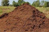 Torubahçe 40 Lt Sığır , İnek , (Büyük Baş Hayvan Gübresi) Çiçek Ve Bitkileriniz İçin