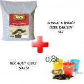 Bonsai Toprağı Zenginleştirilmiş 5 Lt + 3 Ad Saksı