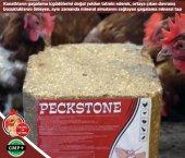 Peckstone Gagalama Taşı