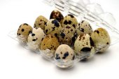 Bıldırcın Yumurta Viyolü 12 Li (400 Adet)