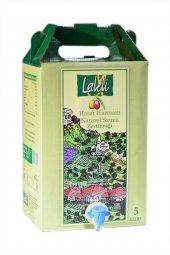 Laleli Organik Hasat Harmanı Zeytinyağı 5 Litre Bag İn Box