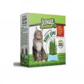 Jungle Mama Kaplı Kedi Çim Seti