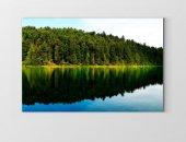 Göl Kenarı Ormanı Tablosu