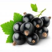 Siyah Frenk Üzümü Tohumu