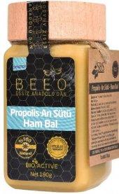 Propolis+arı Sütü+ Ham Bal Karışımı Yetişkinler İçin
