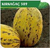 Fide Sepeti Kavun Kırkağaç Tohumu (589) 25grlık 1 Paket