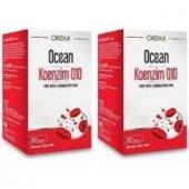Ocean Koenzim Q10 100 Mg 30 Kapsül 2 Adet Skt 01.2022