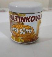 Arı Sütü 50 Gram (Sınırlı Sayıda Stokta)