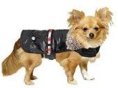 Karlie Led Kemerli Köpek Elbisesi(Siyah)68 Cm
