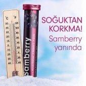 Samberry Kara Mürver Ekstresi + Vitamin C + Çinko Eff. Tb