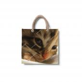 Dijital Baskılı Kedi Desenli Plaj Çantası Çnt01...