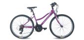 Peugeot 24j. Jm 24 4 Bonıta Bayan Dağ Bisikleti